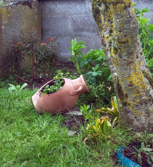 Amphora Plant pot